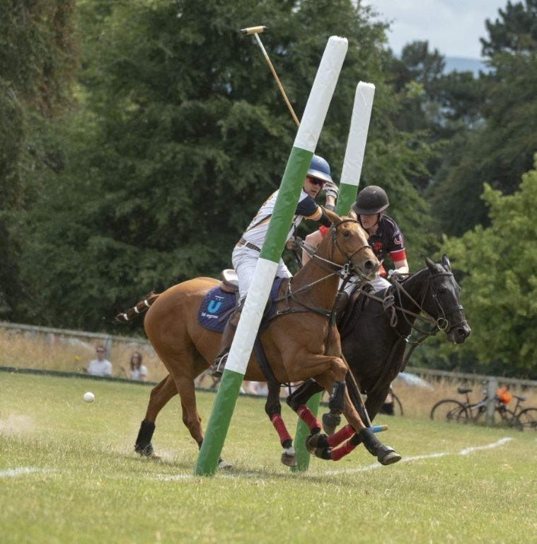 Sponsored Team LHK Polo - Success is Both Horse and Rider