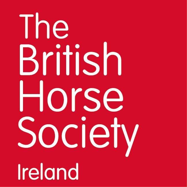 Bluegrass Horse Feeds Sponsor Equine Lameness Talks Hosted by BHS