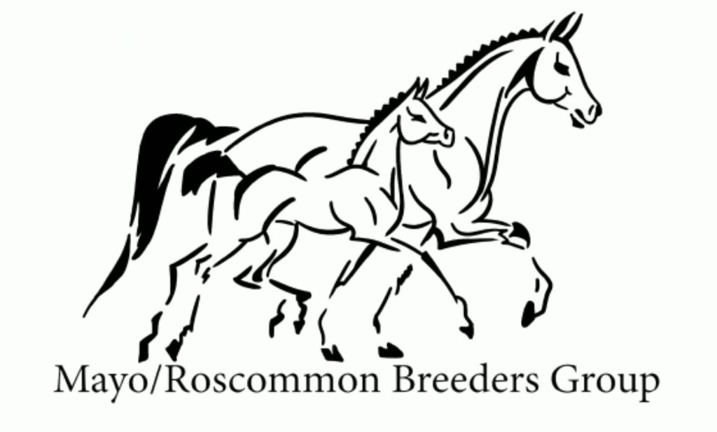 Bluegrass Horse Feeds Sponsor Mayo Roscommon Breeders First Select Foal Sale