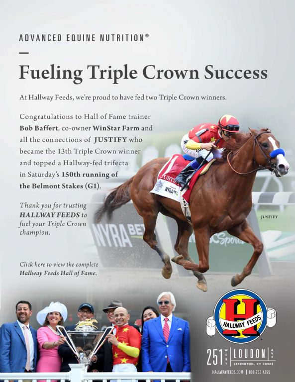 Triple Crown - The Ultimate Thoroughbred Racing Champion