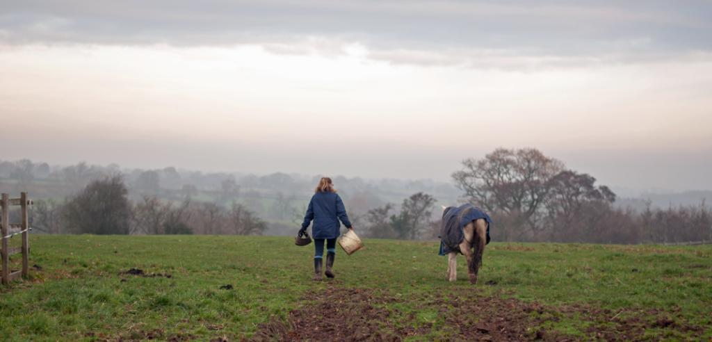 Bluegrass Horse Feeds: Managing Winter Weight!